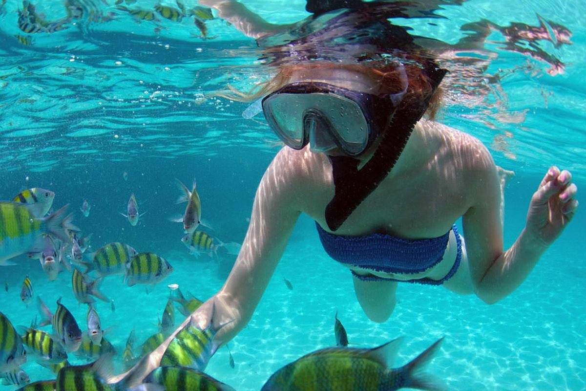 Phi Phi islands snorkelling tours